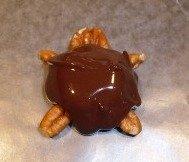 Yummy homemade chocolate turtle candy.